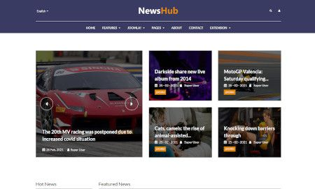 LMS NewsHub Website Design
