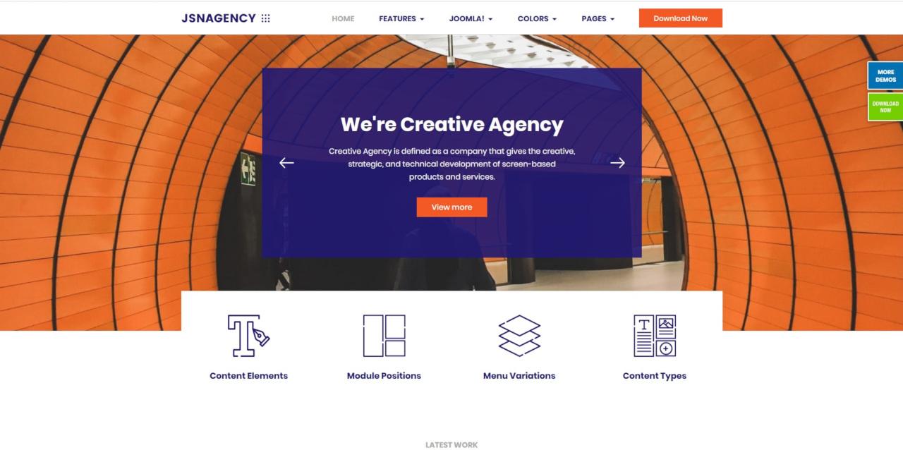 LMS Agency