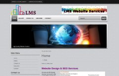LMS Website Services Original Website Design